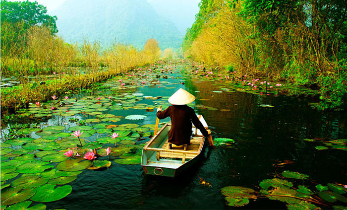 Vietnam Milenaria